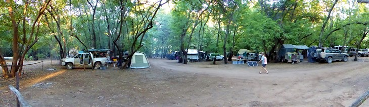 03 No Shortage Of Campsites Within Adels Grove